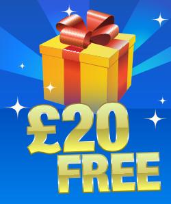 bingo liner mobile bonus