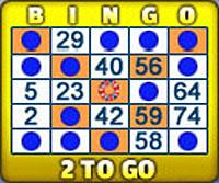 bingo liner 75 ball bingo card