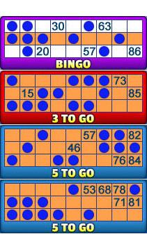 bingo liner 90 ball bingo card examples